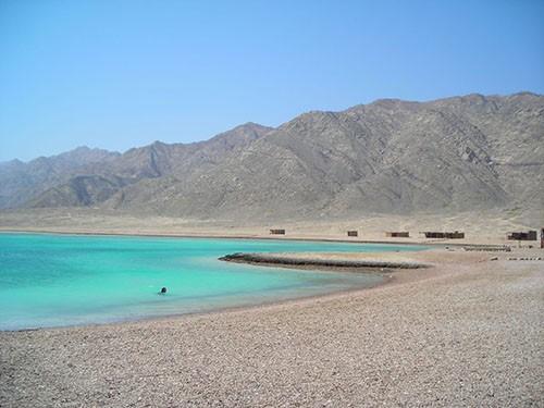 abu galum excursions from sharm el sheikh