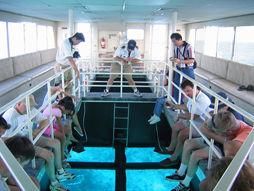glass boat sharm el sheikh sharmers
