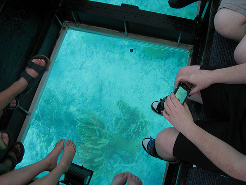 glass bottomed boat sharm el sheikh