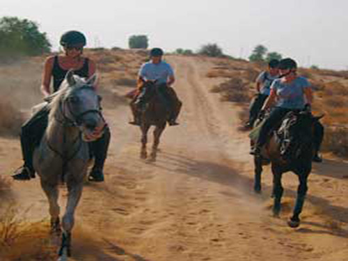 horse riding in sharm el sheikh