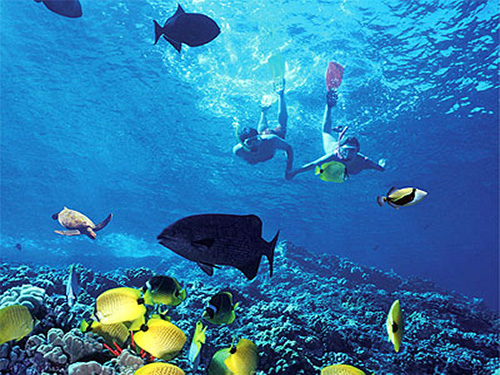 mega tour sharm el sheikh