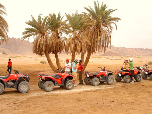 quad bike desert trips with sharmers