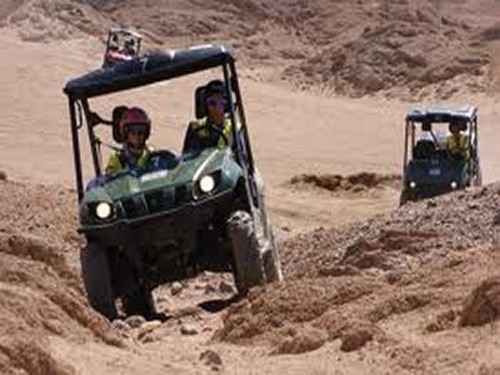 sharm el sheikh rhino buggy