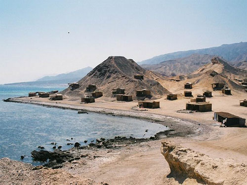 trips to abu galum from sharm el sheikh