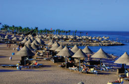 ras mohamed by bus, boat from sharm el sheikh