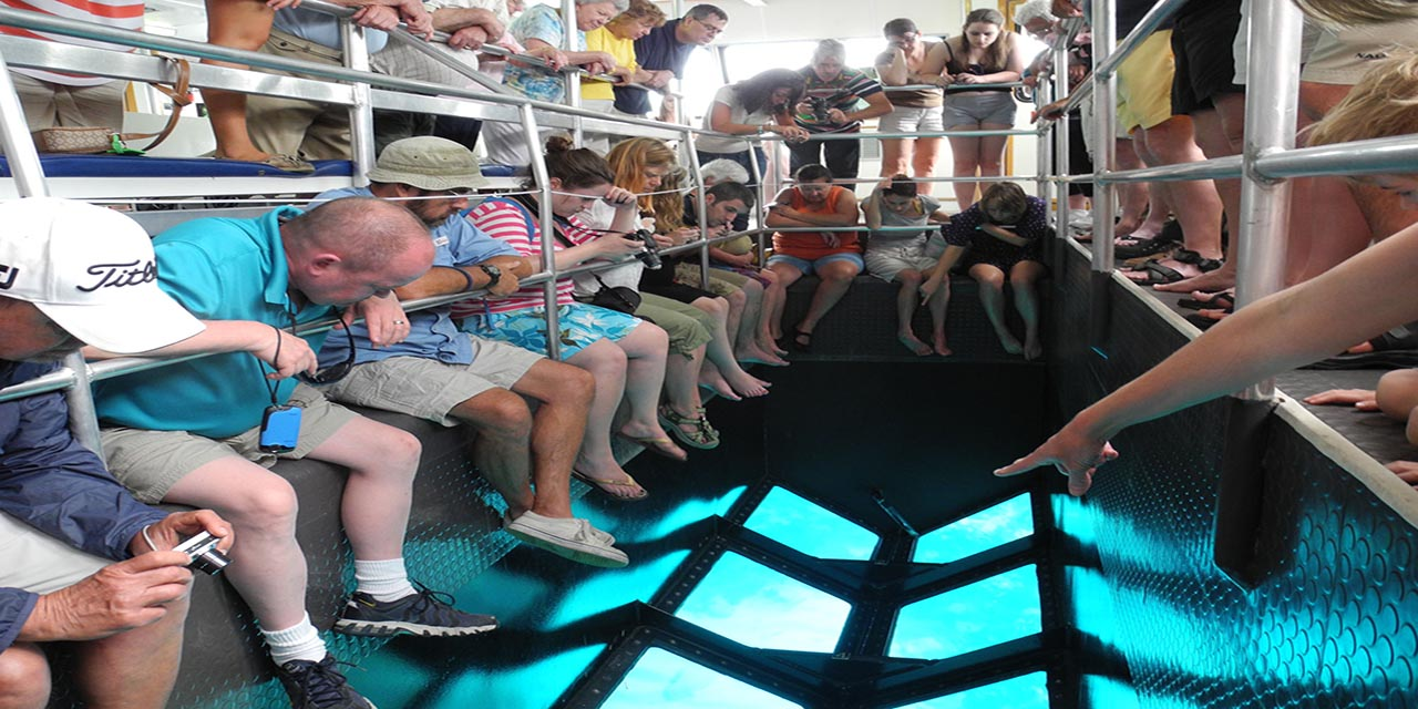 glass boat excursions in sharm el sheikh