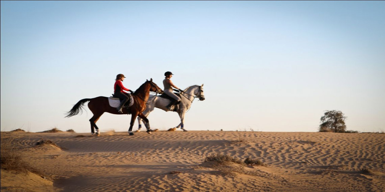 horse riding excursions in sharm el sheikh with sharmers